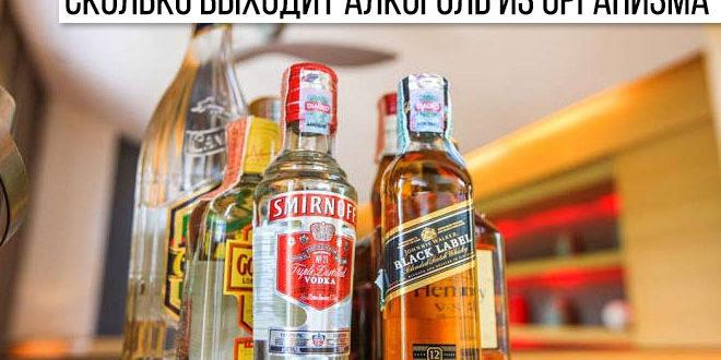 Сколько алкоголь выходит из организма и держится в крови у женщин и мужчин