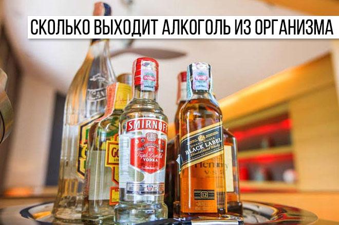 Через сколько времени выводится алкоголь из организма человека